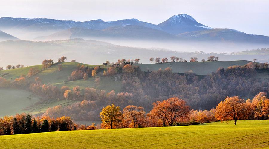 colline-marche-autunno